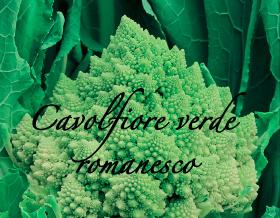 cavolfiore verde romanesco aps vivai piante orticole