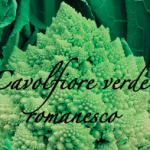 cavolfiore verde romanesco