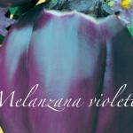 melanzana violetta