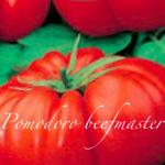 pomodoro beefmaster.png