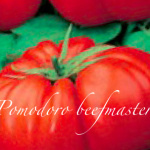 pomodoro beefmaster