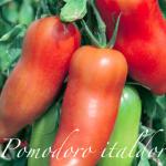 pomodoro italdor.png