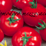 pomodoro mezzocachi.png