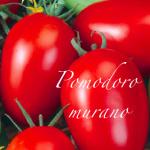pomodoro murano.png