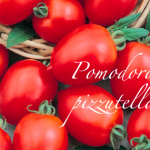 pomodoro pizzutello.png