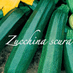zucchina scura
